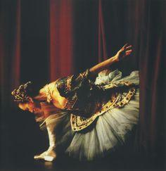 Danse Elisabeth Platel - ONP