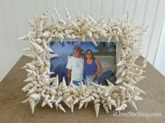 How To Make A Worm Shell Frame
