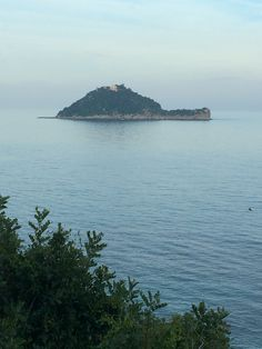 Isola della gallinara