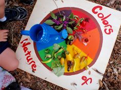 Would go along great with fall leaf study! Color Wheel: take the children to the garden or park and let them fill their color wheel with the colors of nature. I would add the creation story to our adventure! Nanny Activities, Nature Activities, Craft Activities For Kids, Crafts For Kids, Preschool Songs, Math Activities, Outdoor Activities, Nature Scavenger Hunts, Camping Crafts