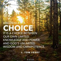 obedience is a choice- love this! How you exercise your free agency is a reflection of your desire or lack there of to follow the Savior.