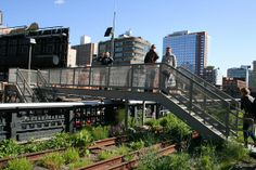 NYCs High Line: an elevated oasis