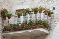Glimpse of Visso, beautiful village in the Province of Macerata - Italy photo