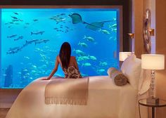 Love the idea of a fish tank in the bedroom.