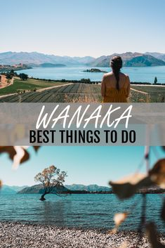 Lake Wanaka is one of the most beautiful places in New Zealand. From planning a Wanaka wedding, to finding the best Wanaka photography spots (it's probably Roy's Peak Wanaka), you'll definitely need to read this guide. Nz South Island, North Island New Zealand, Wanaka New Zealand, Queenstown New Zealand, Us Travel, Places To Travel, Travel Stuff, New Zealand Winter, Stuff To Do