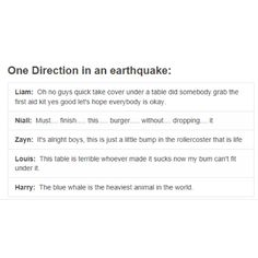 1D in an earthquake niall horan, nialler, louis tomlinson, lou, tommo, harry styles, hazza, harreh, liam payne, zayn malik, one direction, 1D