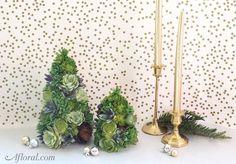 DIY Succulent Tree
