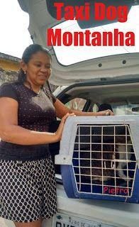 TAXI DOG MONTANHA TRANSPORTE DE ANIMAIS NO RIO DE JANEIRO: Da Barra da Tijuca para Taquara (Pietro)