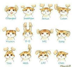 Exo Cat version