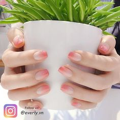 Ombre sanft – wie leidenschaftlich Kerl Online buchen: … – Another shot of these floral nails! Korean Nail Art, Korean Nails, Nail Manicure, Gel Nails, Nail Polish, Nail Swag, Cute Nails, Pretty Nails, Asian Nails
