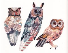 Three Owls Large Archival Print by unitedthread on Etsy