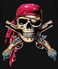 http://www.atomicmall.com/cpic/37/36291_1733_skull-muskets-pirate-cross-stitch-pattern-look.jpg