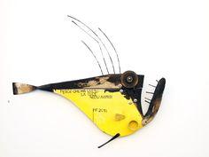 pesce che ha visto la luce- stefano pilato