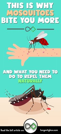 THIS IS WHY MOSQUITOES BITE YOU MORE AND WHAT YOU NEED TO DO TO REPEL THEM NATURALLY