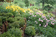 Japanese Garden on Garden Walk Buffalo
