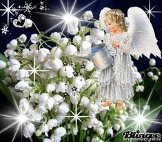 Fondo de Pantalla Whatsapp - Praying the Lord will send His Holy Angels to shower His blessings upon you, alw. Angel Pictures, Jesus Pictures, Beautiful Love, Beautiful Flowers, Prays The Lord, I Believe In Angels, Garden Angels, Special Flowers, Angels Among Us