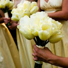yellow Tulip cascade wedding bouquets | Yellow Tulip Bridal Bouquet The bridesmaid bouquets