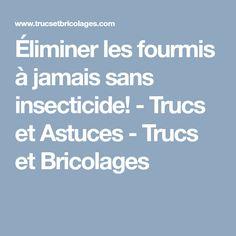 Éliminer les fourmis à jamais sans insecticide! - Trucs et Astuces - Trucs et Bricolages