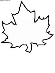 Resultado de imagen para dibujo de hojas para imprimir