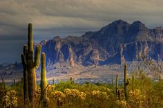Superstition Mountains.  www.azhomebuyerinfo.com