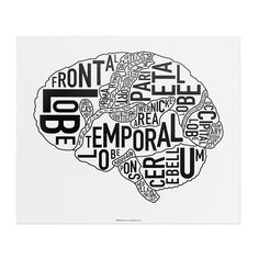 The Brain Anatomy Art x Classic Black & White Poster - City Neighborhood Maps & Brain Anatomy, Anatomy Art, Anatomy And Physiology, Anatomy Drawing, Ap Psychology, School Psychology, Brain Diagram, Brain Art, The Brain