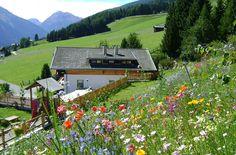 Ferienwohnungen, Urlaub auf dem Bauernhof Oberhof Ultental Südtirol Italien