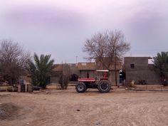 Iraqi farm