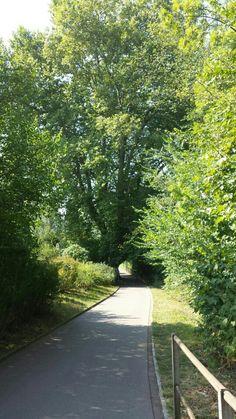 Aarau, Aareweg .. Switzerland, Sidewalk, Country Roads, Side Walkway, Walkway, Walkways, Pavement