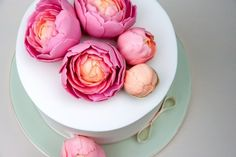 Peony Decorated Cake – Bake by Jane