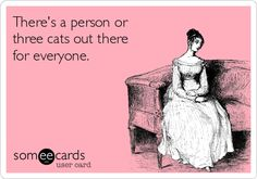 There's a person or three cats out there for everyone.