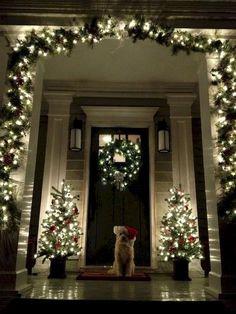 A Whole Bunch Of Christmas Porch Decorating Ideas I totally need a Front Porch to decorate for Christmas! Love the feeling that this gives me. I love Christmas time! A Whole Bunch Of Christmas Porch Decorating Ideas – Christmas Decorating – Christmas Time Is Here, Noel Christmas, Winter Christmas, Christmas Crafts, Christmas Entryway, Vintage Christmas, Christmas Puppy, Simple Christmas, Christmas Porch Ideas