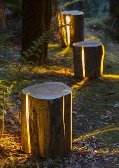 Decoração com toras de madeira
