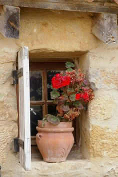 Nothing says France like red geraniums on a window sill. Old Windows, Windows And Doors, French Windows, Red Geraniums, Window View, Through The Window, Old Doors, Window Boxes, Doorway