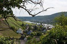 Wandern: Auf dem Moselsteig von Winningen nach Koblenz › Ausflugstipps für Deutschland
