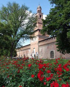 #milano#baciata#dal#sole#buonadomenica#castellosforzesco#parcosempione#in#giro#con#papa'#milanodaclick#milanodavedere#vivomilano#top_lombardia_photo#igersmilano#ig_milano#volgolombardia#walkingMilan#milandreamin by manuela.f