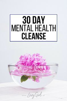 30 Day Mental Health Cleanse | Lazy Girl