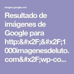 1000imagenesdeluto.com