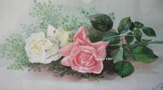 FREE SHIP Print Cabbage Roses CP14 Half by VictorianRosePrints, $10.99