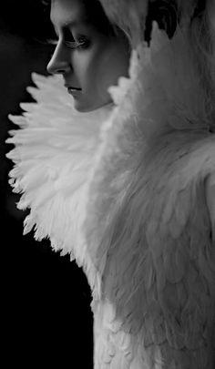 30 ideas bird wings costume feathers alexander mcqueen for 2020 Foto Fashion, Fashion Art, Fashion Design, White Fashion, Ladies Fashion, Alexander Mcqueen, Michel Fugain, Snow Queen, Mc Queen