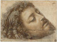 SOLARIO Andrea Titre Tête de saint Jean-Baptiste Paris, Musée du Louvre
