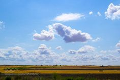 Cloud butterfly by carmenvcastellano. Please Like http://fb.me/go4photos and Follow @go4fotos Thank You. :-)