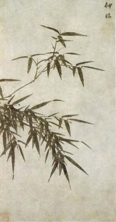 Bamboo  by Xia Chang, Ming Dynasty