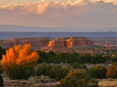 High Road New Mexico | Art Galleries, Artist Studios, and Culture ...