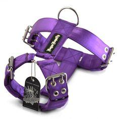 0f240c29b79 Dog Harness - SupaTuff Heavy Duty Purple #dogs #doglovers #dogharness  #dogsupplies #dogappareldeals #affiliatelink