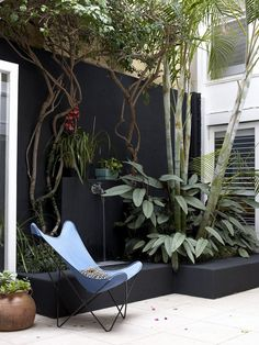 A courtyard wall can be painted black and plants grouped together to provide an intimate space BKF Butterfly chair Outdoor Rooms, Outdoor Gardens, Outdoor Decor, Colorful Garden, Black Walls, Garden Spaces, Garden Inspiration, Interior Inspiration, Landscape Design