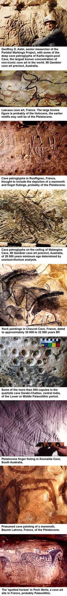 Chauvet cave horses