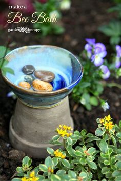 Add rocks to a shallow dish or bowl so that they sit above clean water to give the bees a place to perch. If you have a problem with aphids, the water will attract beneficial insects so place the dish near the plant with the aphid problem to help them wash down the feast!
