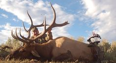 http://www.sportsoutdoor.org/hunting/10-colorado-elk-hunting-outfitters-that-do-it-right/