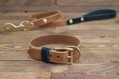 Dog Leash Combo dog collar and leash Whiskey leather leash Leather Dog Collars, Pet Collars, Dog Accessories, Leather Accessories, Forest Color, Collar And Leash, Dog Collar Tags, Animal Fashion, Leather Keychain