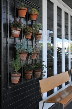 1 Day in Auckland: Interior & Sightseeing Plant Wall, Exterior, Interior, Wall